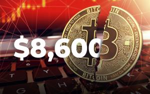 bitcoin dinamika metams